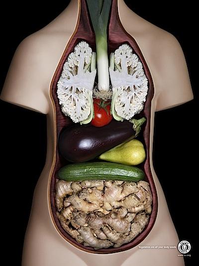 International-Vegetarian-Union.jpg