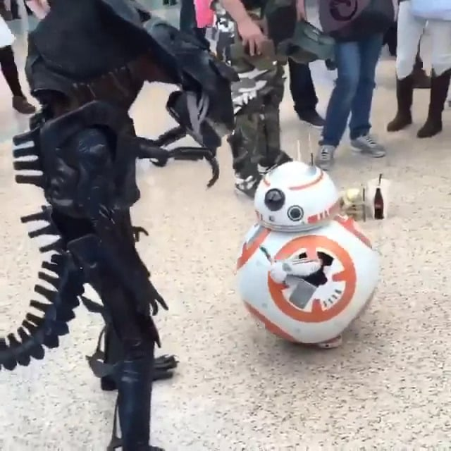 BB8 Youjo Cosplay 01